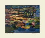 Water Lilies in the Sun, by Jan Schmuckal - Product Image