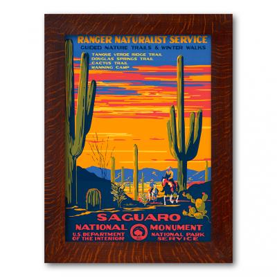Saguaro National Monument - Product Image